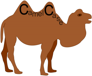 Camel case naming system used in Visual studio